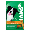 Iams ProActive Health Adult Large Dog Biscuits