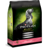 Pro Plan Select Sensitive Skin and Stomach Formula Dry Dog Food